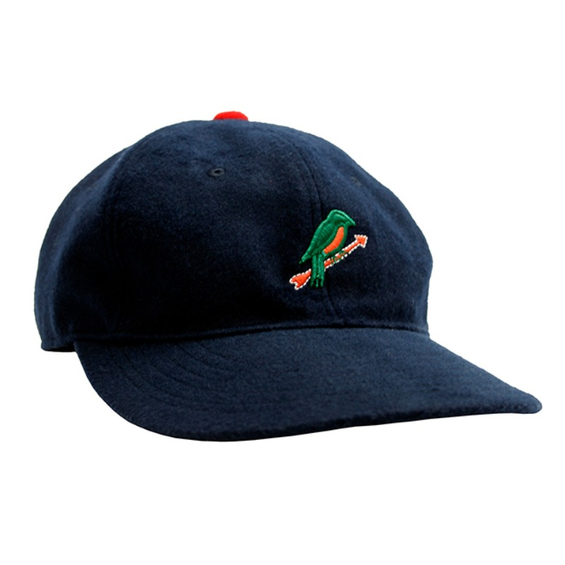 CAP  Navy Bird